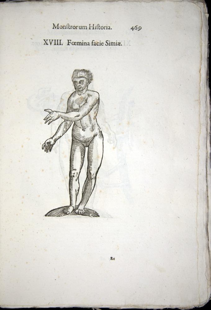 Image of Aldrovandi-1570-0469