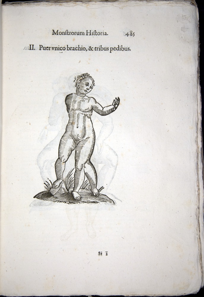 Image of Aldrovandi-1570-0485
