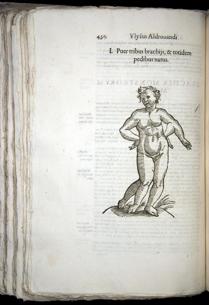 Image of Aldrovandi-1570-0490