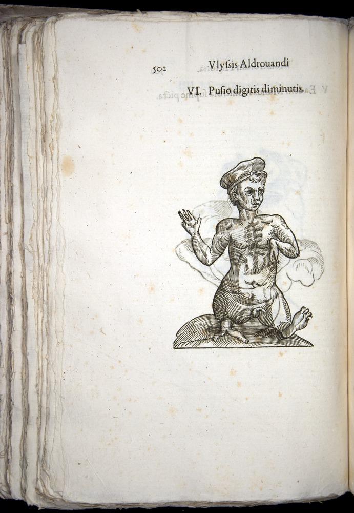 Image of Aldrovandi-1570-0502
