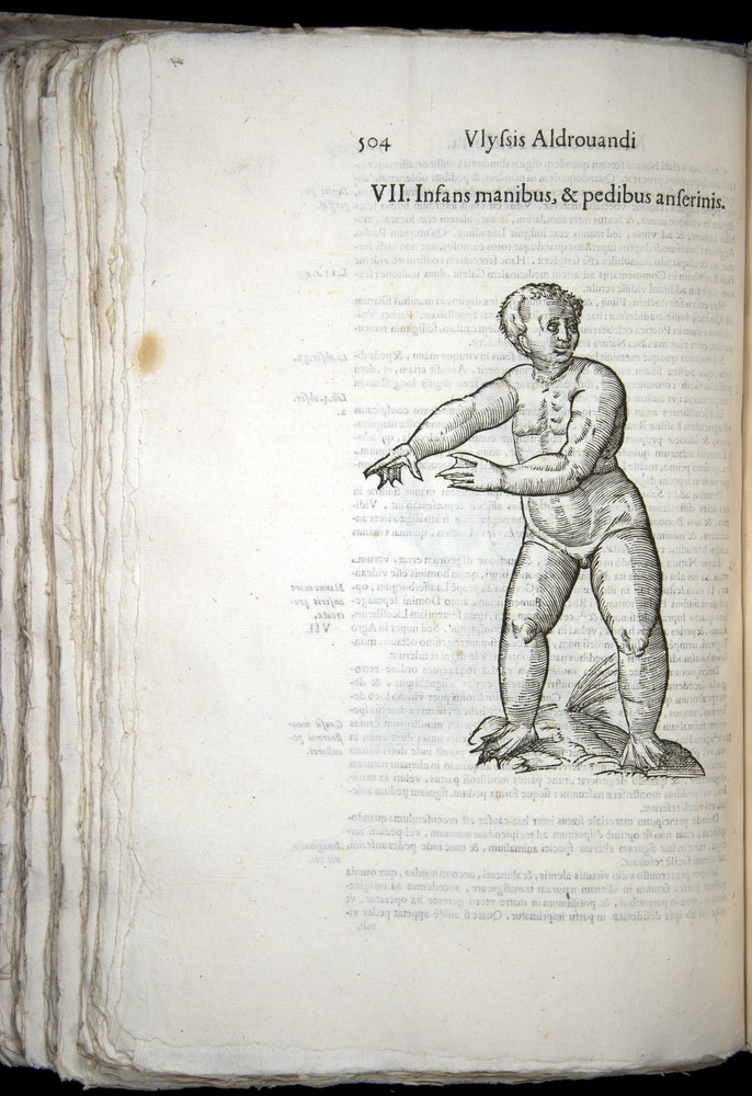 Image of Aldrovandi-1570-0504