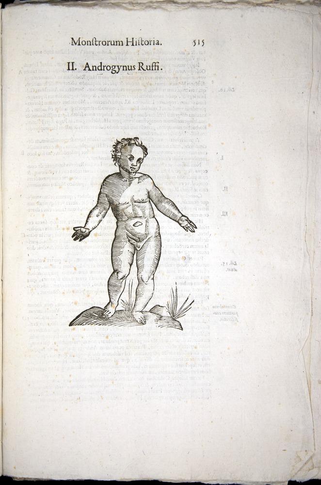 Image of Aldrovandi-1570-0515