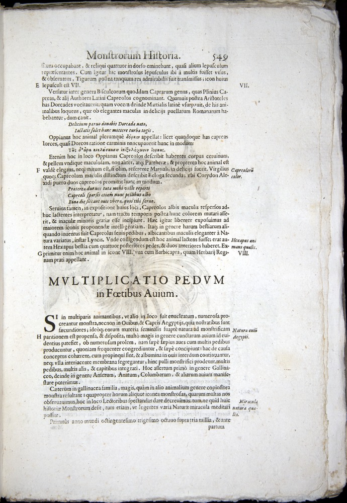 Image of Aldrovandi-1570-0549