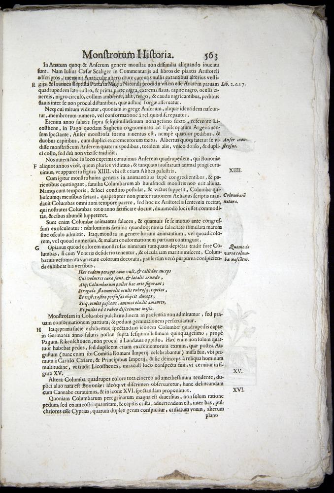 Image of Aldrovandi-1570-0563