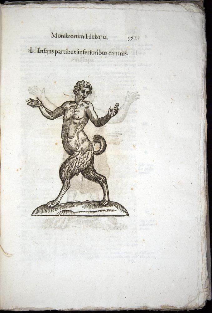 Image of Aldrovandi-1570-0571