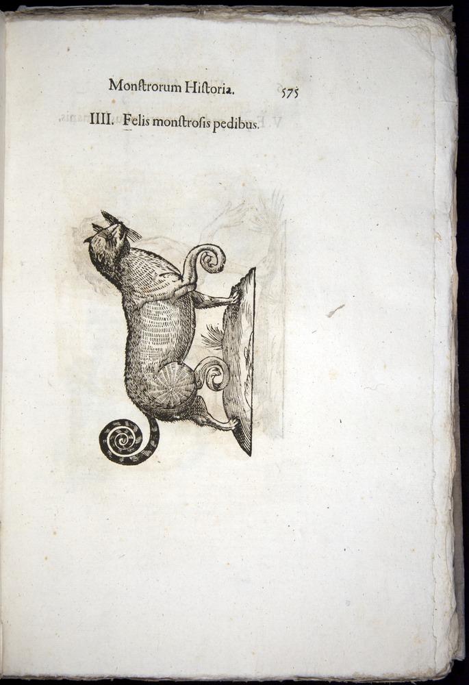 Image of Aldrovandi-1570-0575