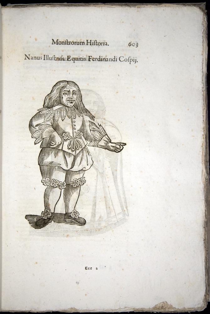 Image of Aldrovandi-1570-0603