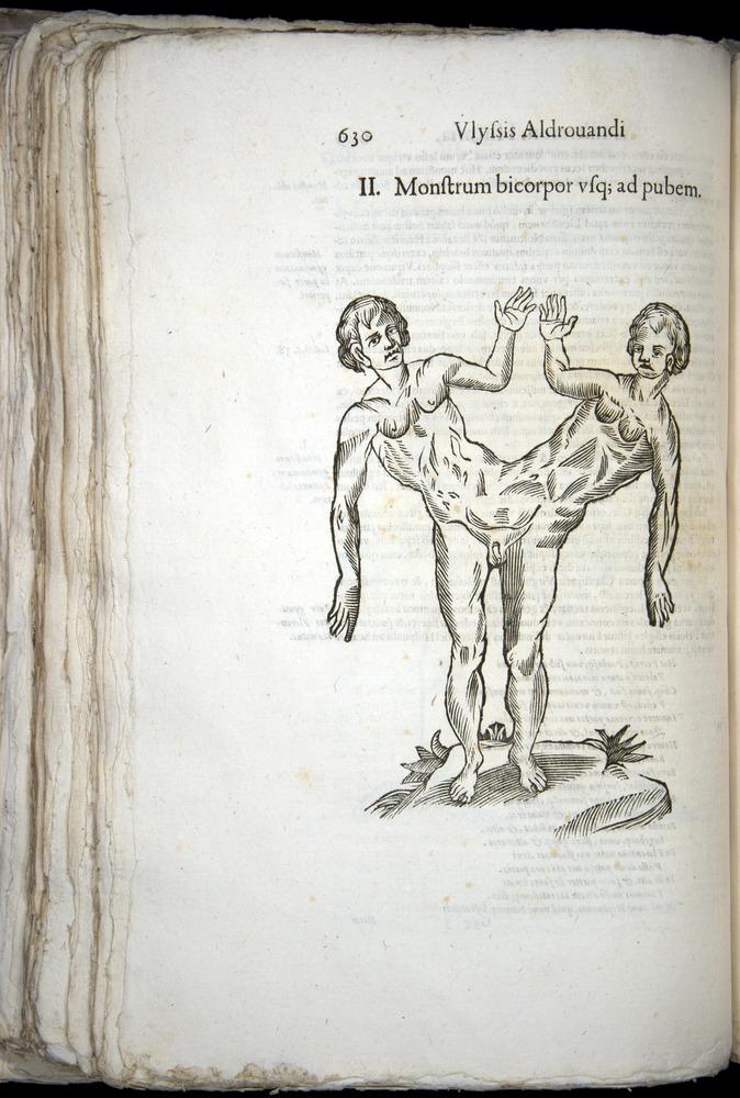 Image of Aldrovandi-1570-0630
