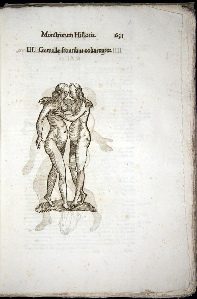 Image of Aldrovandi-1570-0635