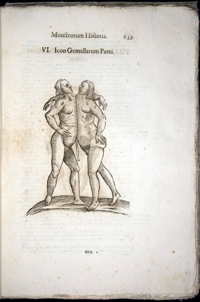 Image of Aldrovandi-1570-0639