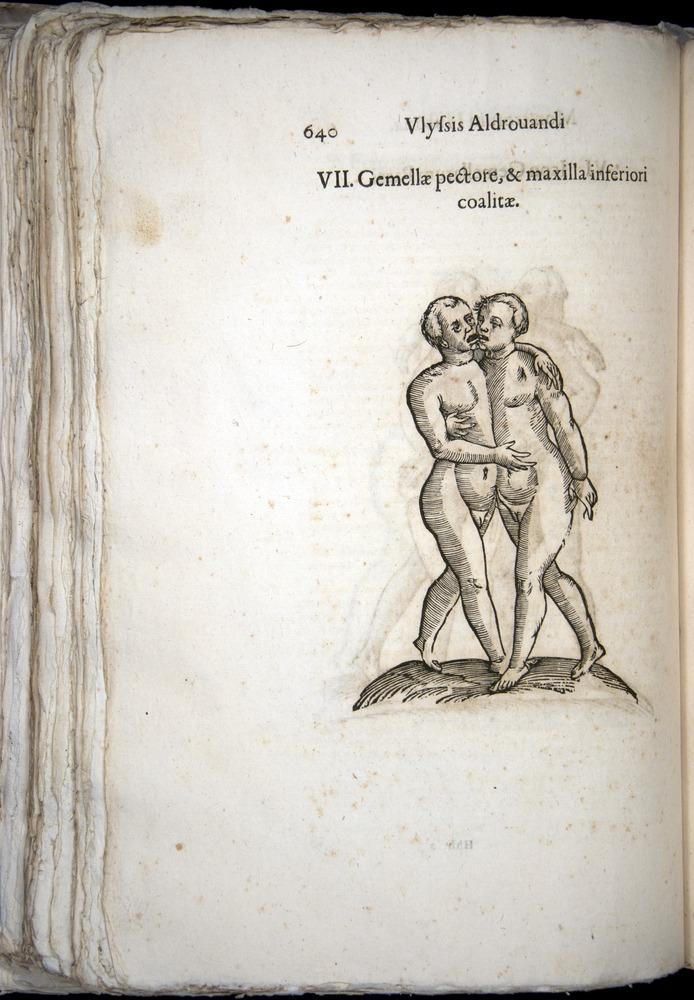 Image of Aldrovandi-1570-0640