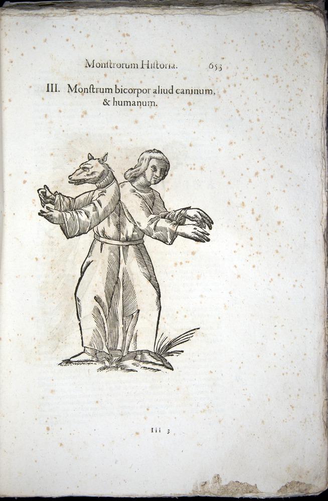 Image of Aldrovandi-1570-0653