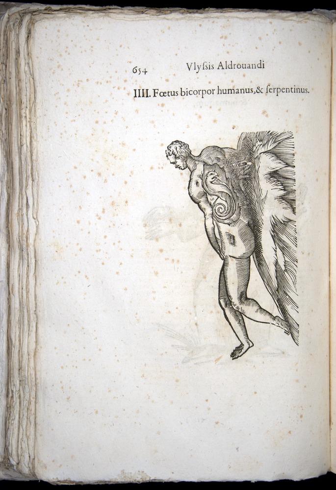 Image of Aldrovandi-1570-0654