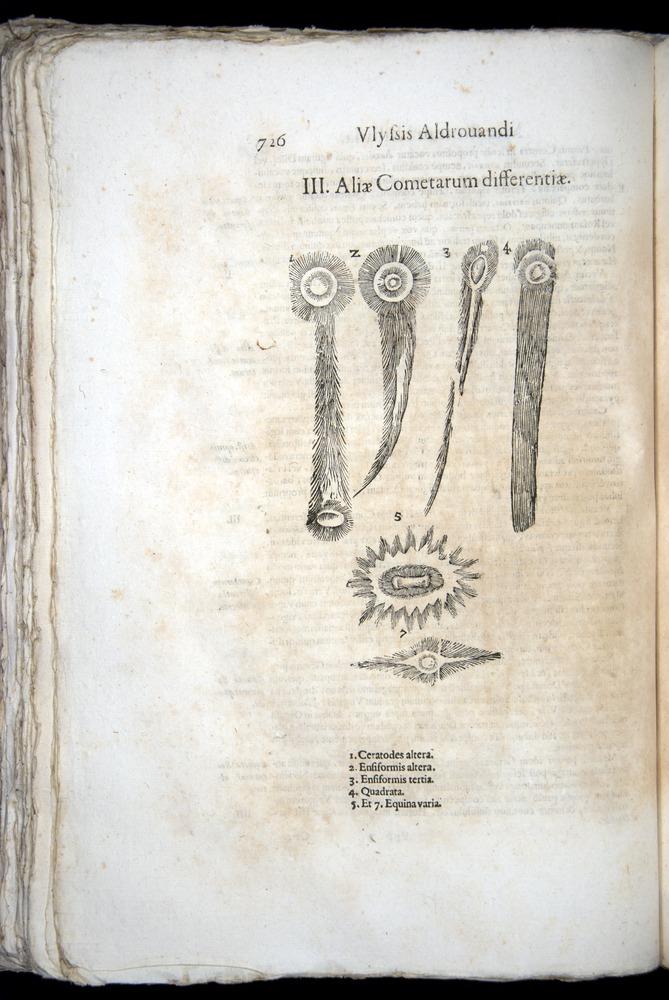 Image of Aldrovandi-1570-0726