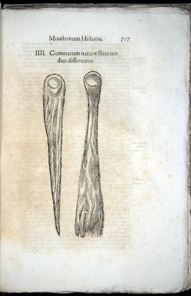 Image of Aldrovandi-1570-0727