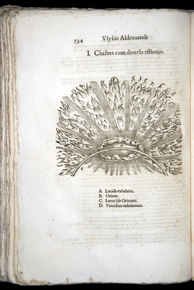 Image of Aldrovandi-1570-0734