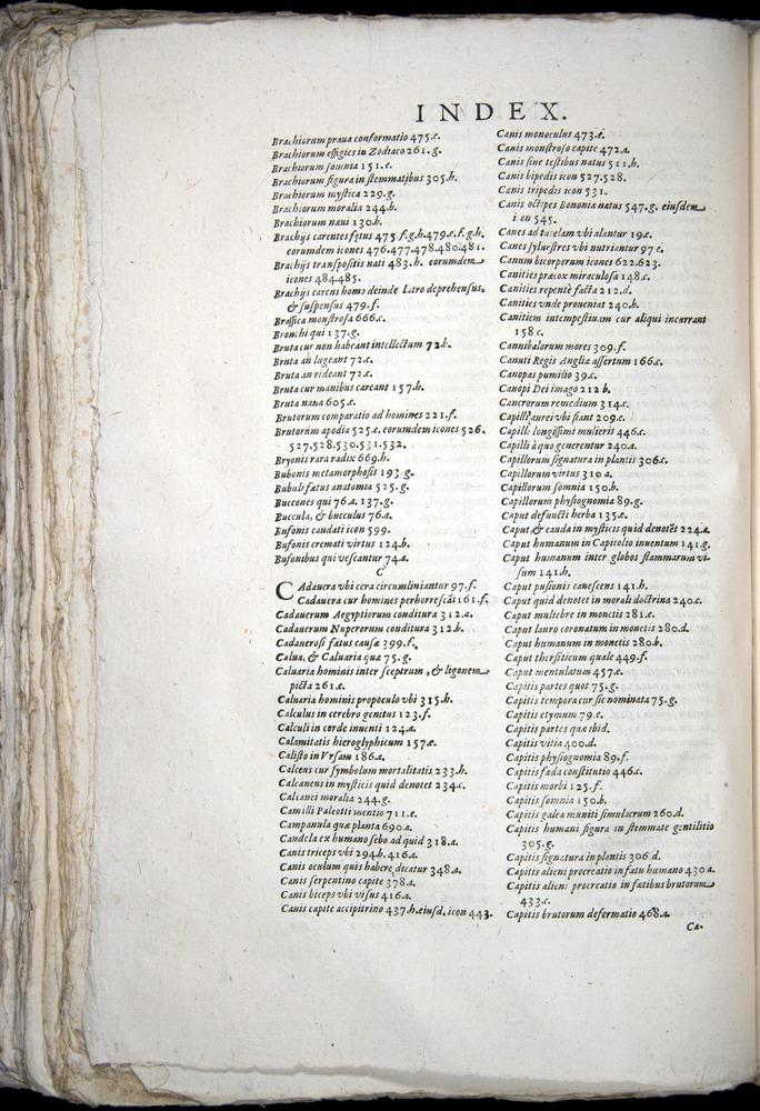Image of Aldrovandi-1570-yy04