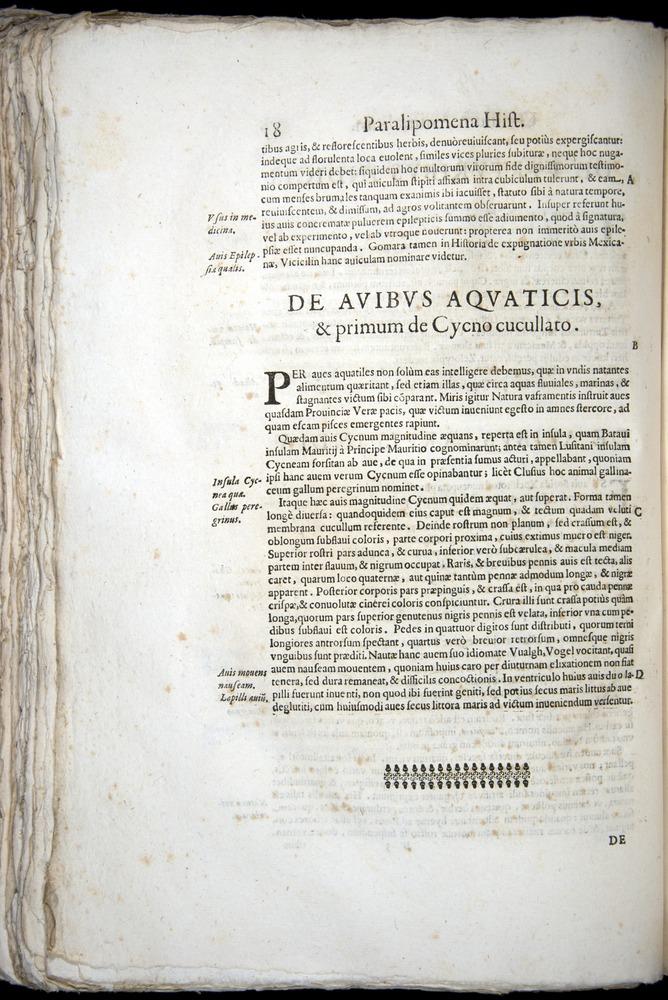 Image of Aldrovandi-1570-z018