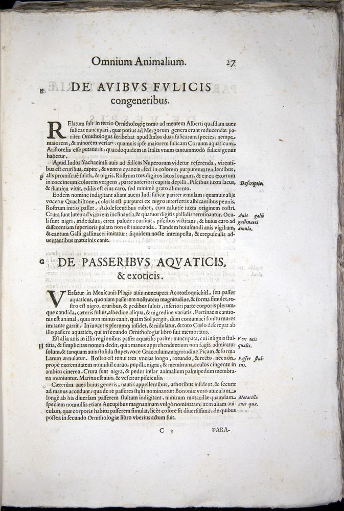 Image of Aldrovandi-1570-z027