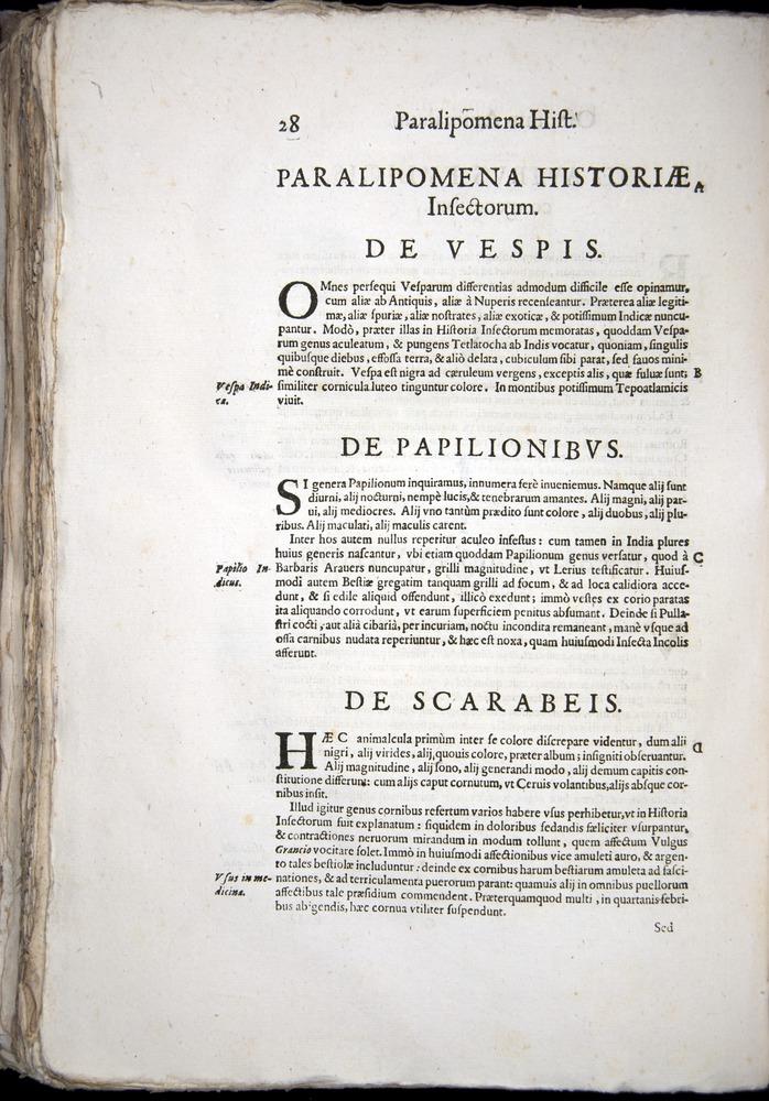Image of Aldrovandi-1570-z028