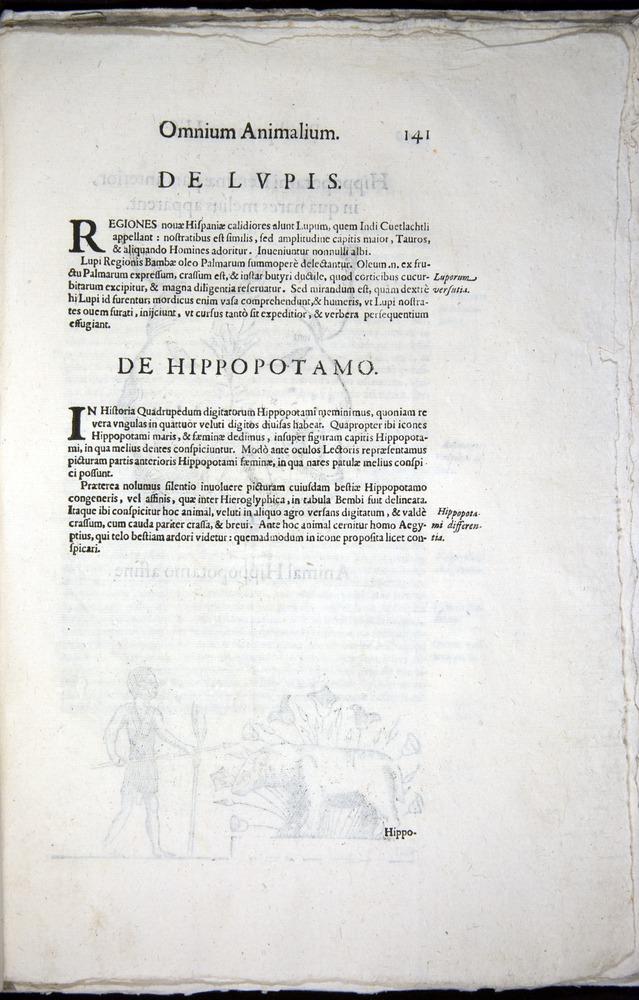 Image of Aldrovandi-1570-z141