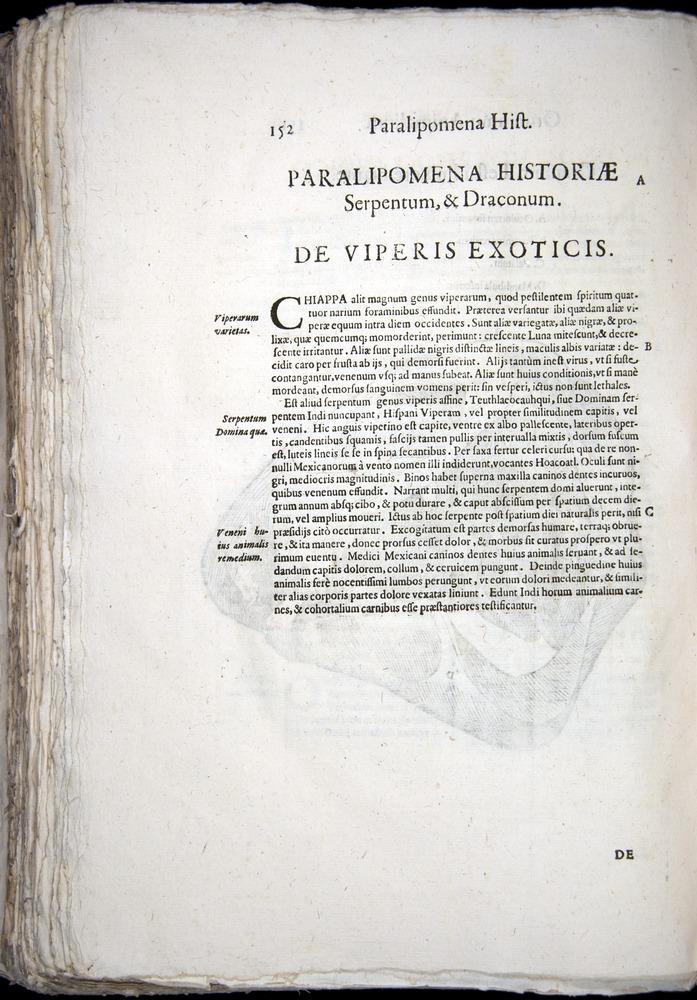 Image of Aldrovandi-1570-z152