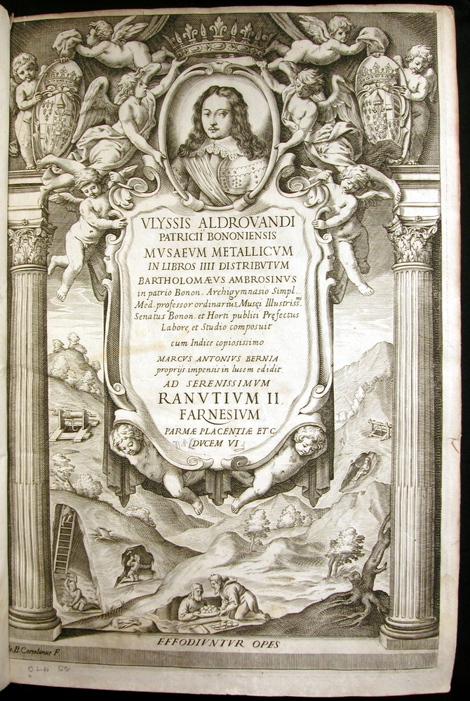 Image of Aldrovandi-1648-00000-tp