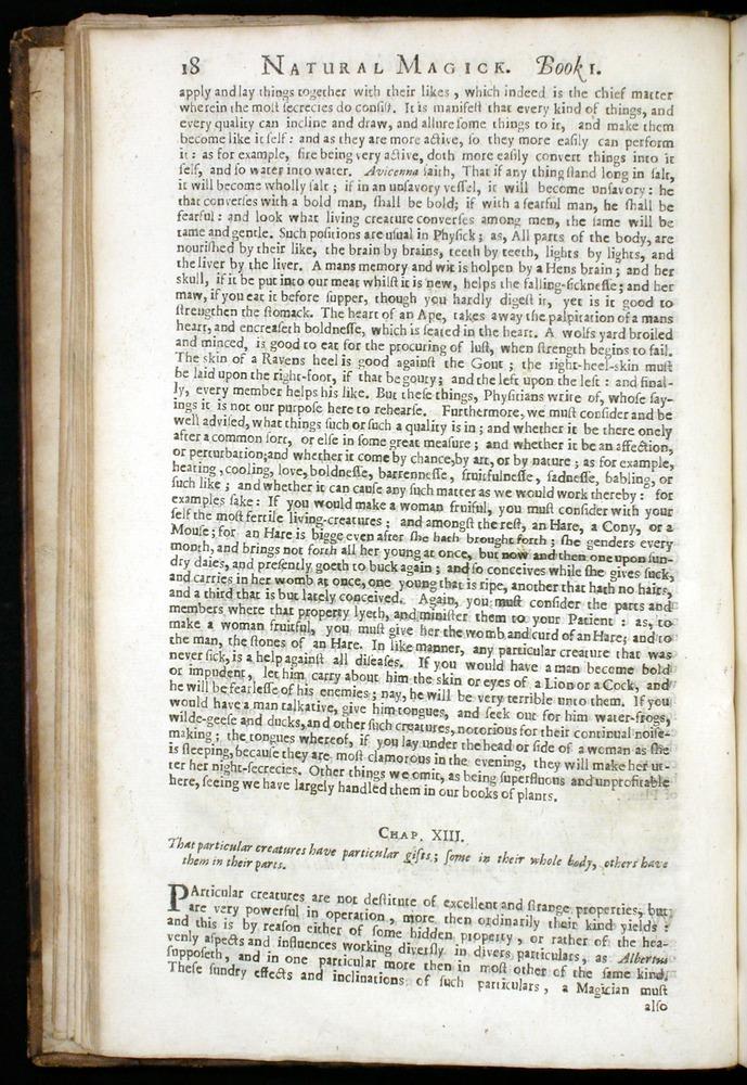 Image of DellaPorta-1658-018