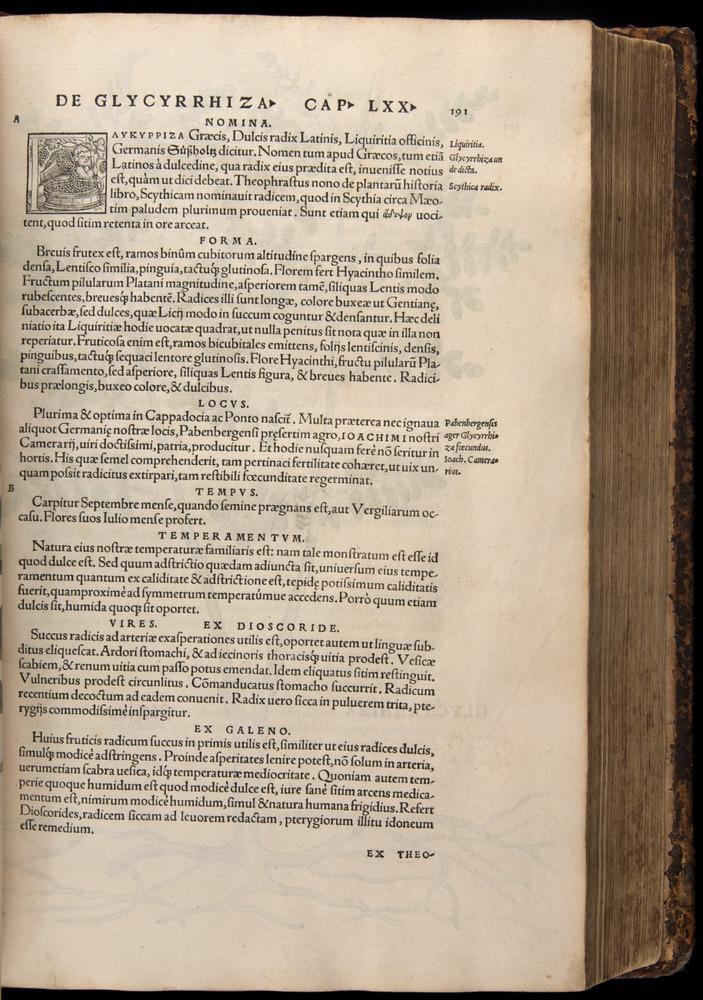 Image of Fuchs-1542-191