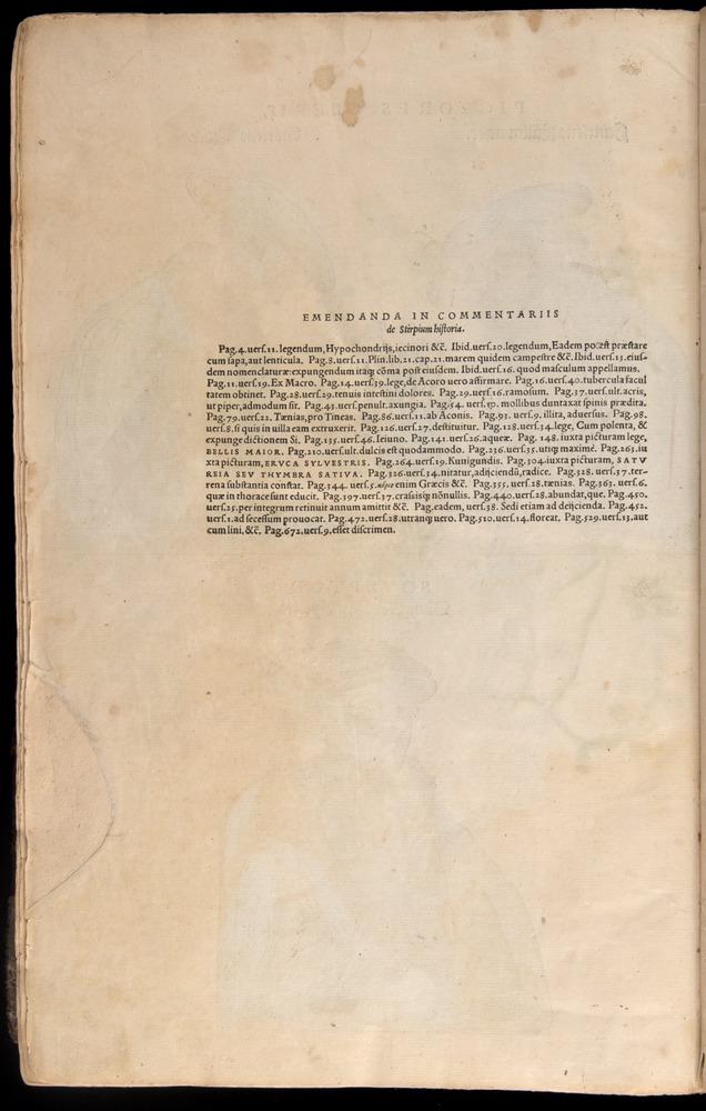 Image of Fuchs-1542-898