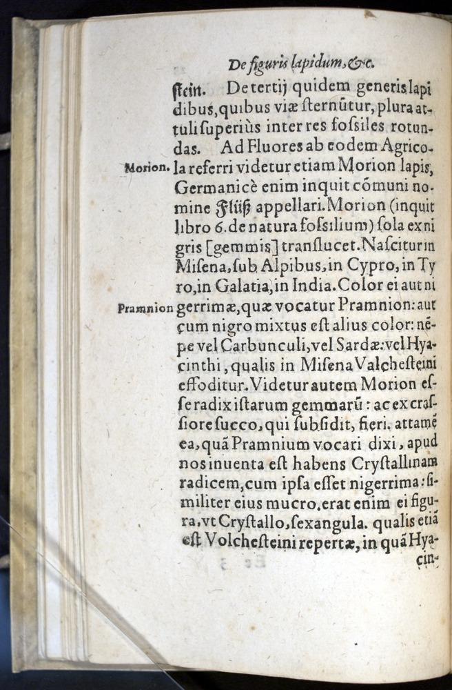 Image of Gesner-1565a-0028v