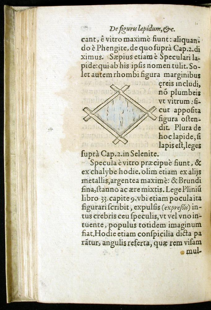 Image of Gesner-1565a-0109v