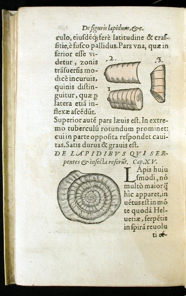 Image of Gesner-1565a-0167v