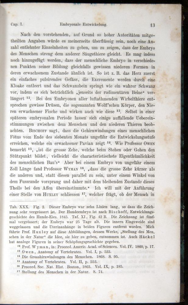 Image of Darwin-F1065.1-1871-00013