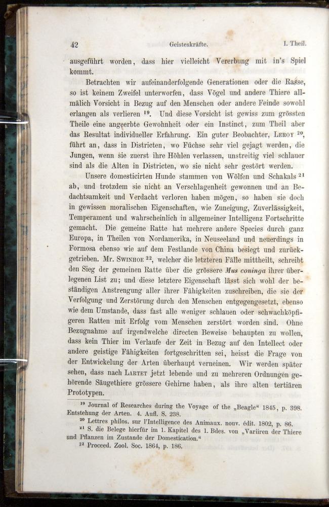 Image of Darwin-F1065.1-1871-00042