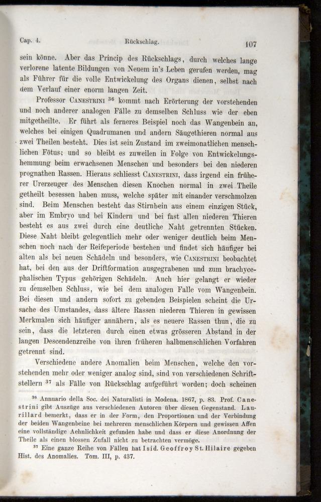 Image of Darwin-F1065.1-1871-00107