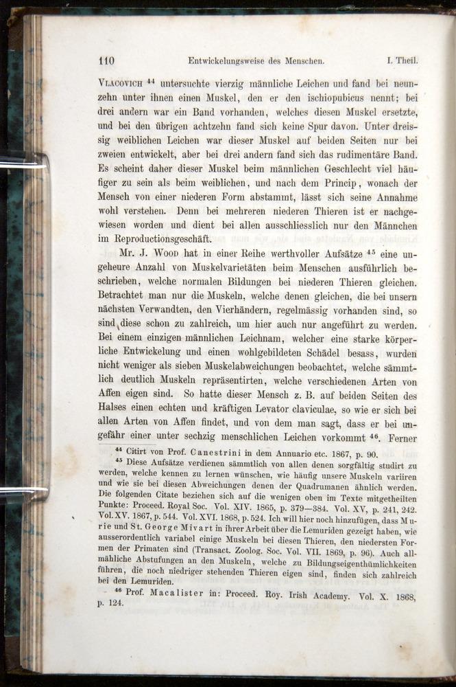 Image of Darwin-F1065.1-1871-00110