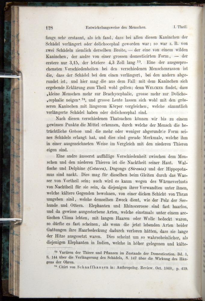 Image of Darwin-F1065.1-1871-00128
