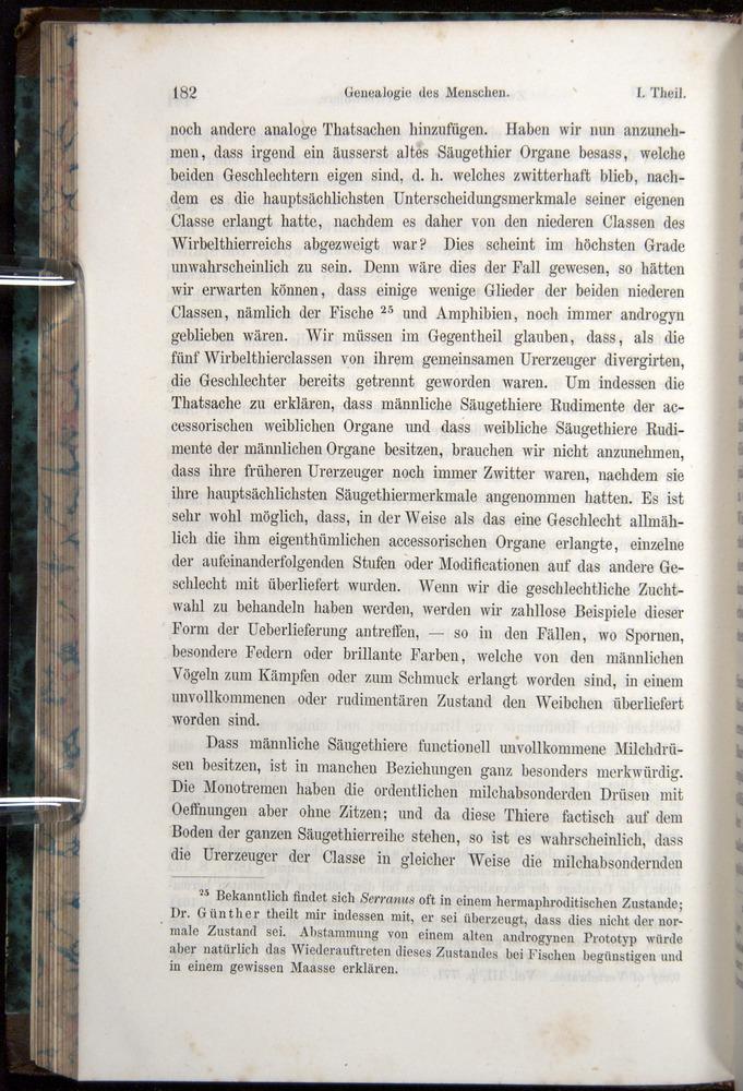 Image of Darwin-F1065.1-1871-00182