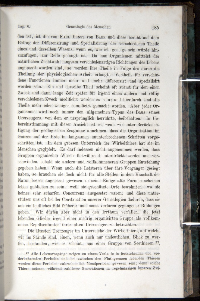 Image of Darwin-F1065.1-1871-00185
