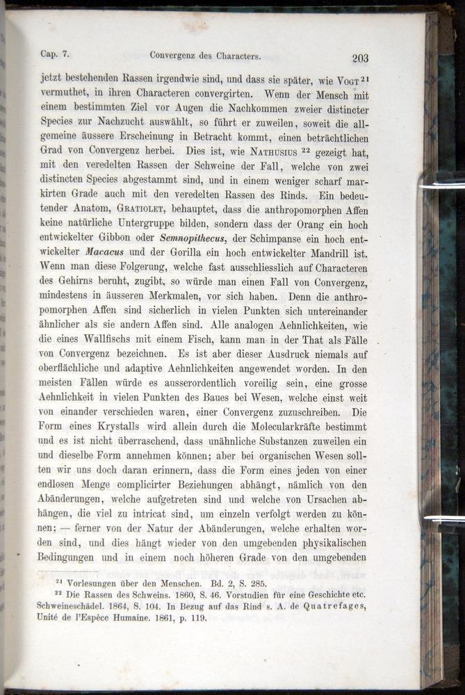 Image of Darwin-F1065.1-1871-00203