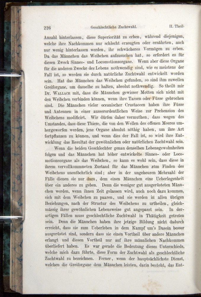 Image of Darwin-F1065.1-1871-00226