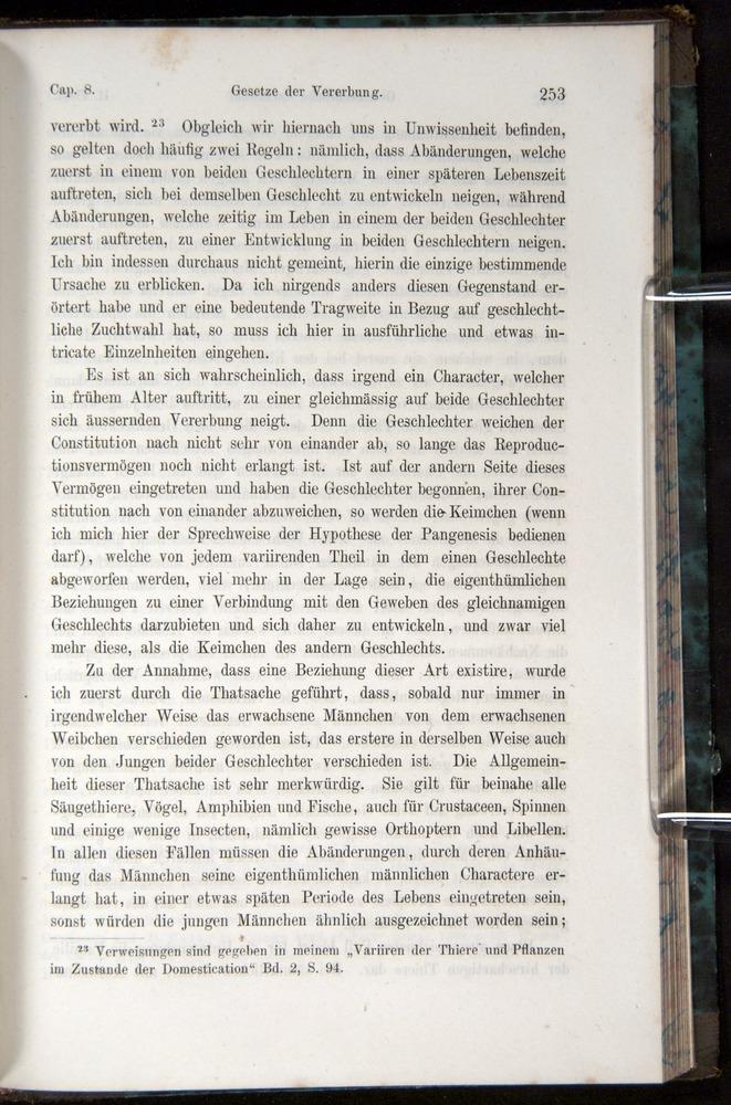 Image of Darwin-F1065.1-1871-00253