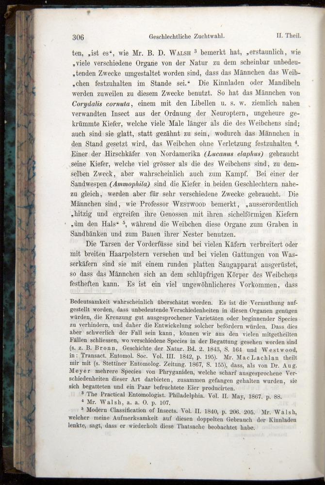 Image of Darwin-F1065.1-1871-00306