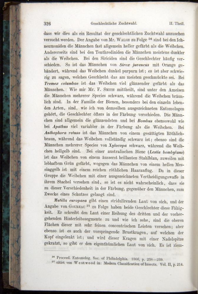 Image of Darwin-F1065.1-1871-00326