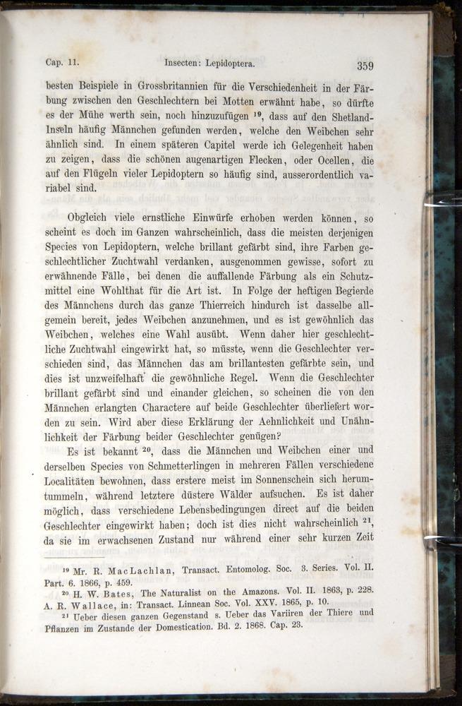 Image of Darwin-F1065.1-1871-00359