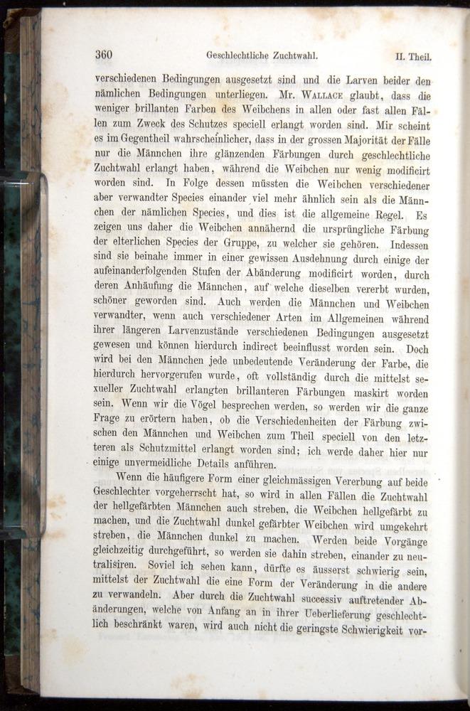 Image of Darwin-F1065.1-1871-00360