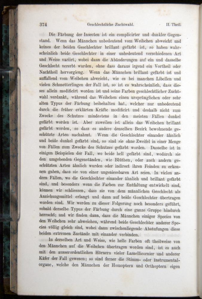 Image of Darwin-F1065.1-1871-00374