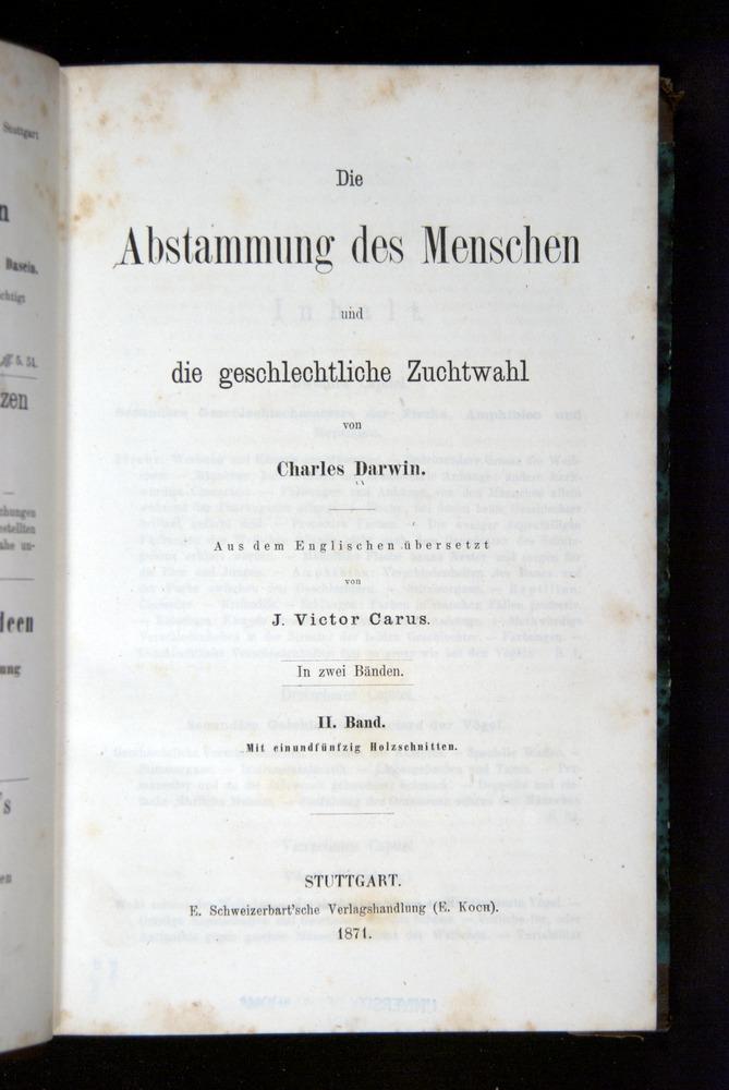 Image of Darwin-F1065.2-1871-000-tp2