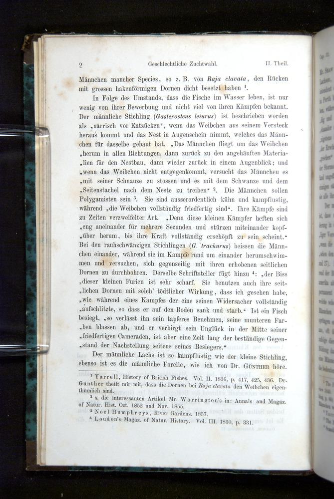 Image of Darwin-F1065.2-1871-002